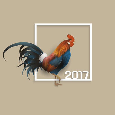 chinese new year card: Rooster - symbol of 2017 Chinese calendar with paper frame. Chinese Zodiac Sign.  Creative Graphic element for New Years design. Vector illustration