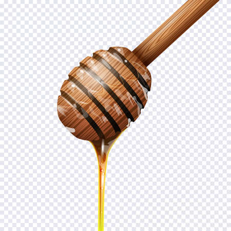 dipper: Honey dipper on transparent background. Realistic vector illustration