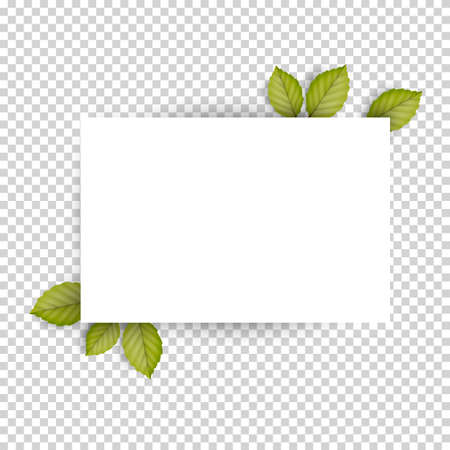 photo album: Horizontal blank white sheet paper and green fresh spring leaves. Empty frame template. Vector Illustration