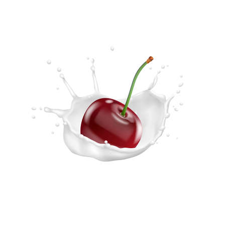 Red cherry and milk splash,vector 3d icon. Realistic vector illustration Illustration