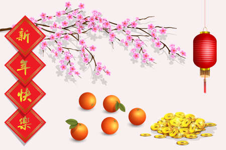 Vector design elements for Chinese Lunar New Year. East new year graphic vector objects Vectores