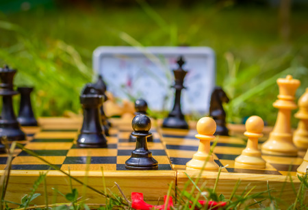 Chess board in grass