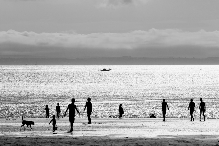 beach with people silhouette  photo