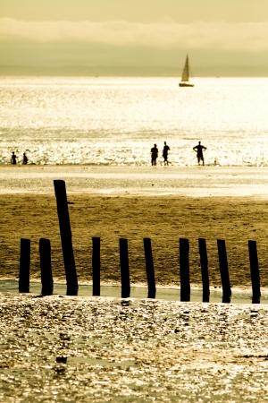 beach with people silhouette