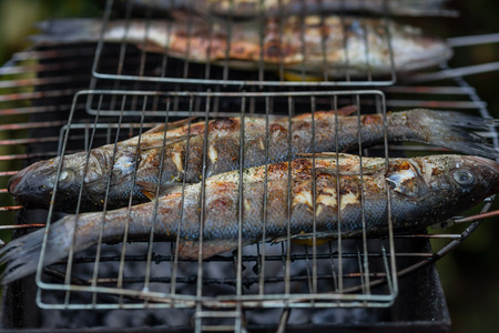 sea bass to the barbecue