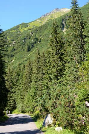 tatras: Mountain road (Tatras)