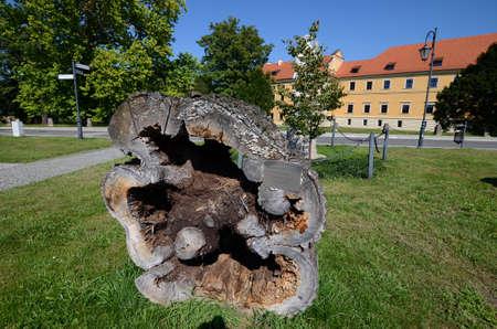 rudy: Cistercian Abbey in Rudy near Raciborz in Poland Editorial
