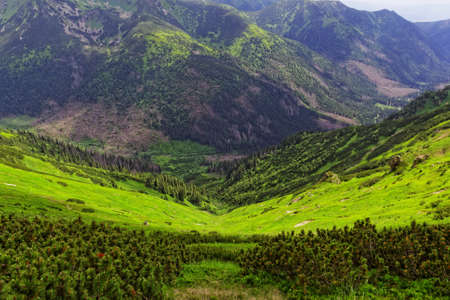 valley in the mountains
