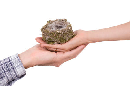 Two hands with bird's nest on white Stock Photo - 1944978