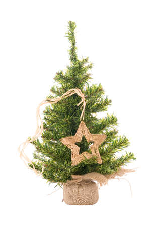 Christmas tree with star on the white photo