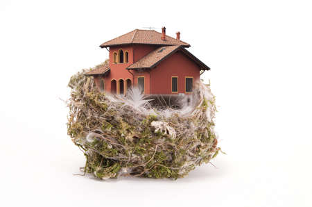 bird nest: Birds nest withe the house on white Stock Photo