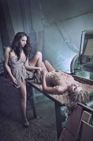 pareja desnuda: Dos mujeres de la belleza como maniqu�es Foto de archivo