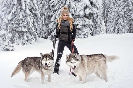 woman beautiful: Happy young woman playing with siberian husky dogs in winter forest Stock Photo