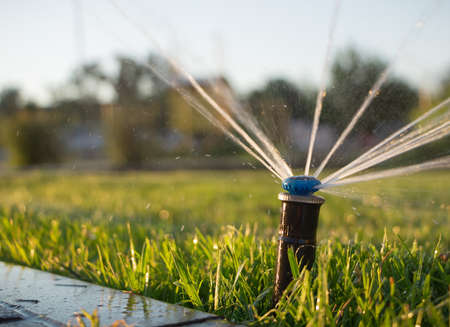 Automatic sprinkler system watering the lawn. Close-up 스톡 콘텐츠