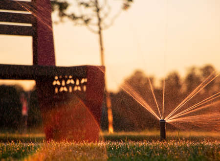 The system of automatic watering the lawn in the park at sunset. Irrigation system.