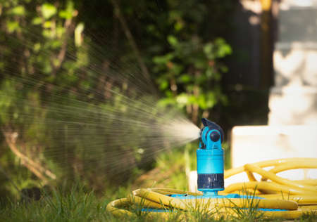 Automatic sprinkler system watering the lawn in the garden. 스톡 콘텐츠