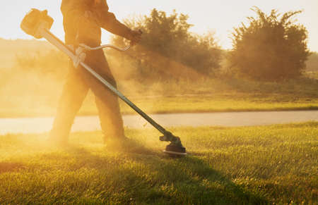Gardener mows the lawn with a lawn mower early in the morning at dawn. Lawn and parkland care. Sunbeams shining through the gardener. Imagens