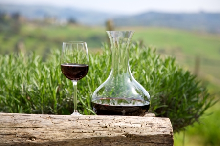 Red wine in a wine carafe and a wine glass in vineyard photo