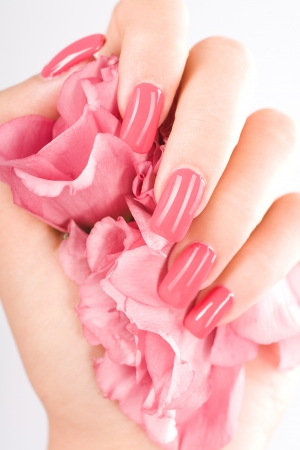 Beautiful woman hands with rose photo