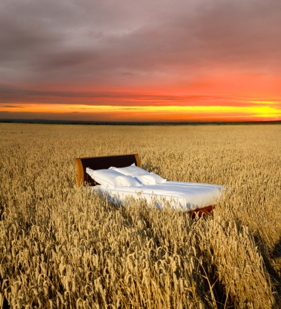 silent night: bed in a grain field- concept of good sleep