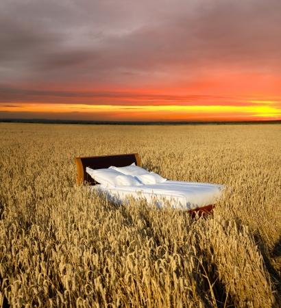 buonanotte: letto in un campo di grano-concetto di buon sonno