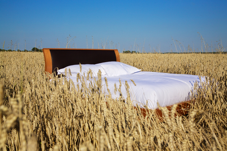 bed time: bed in a grain field- concept of good sleep