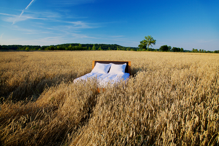 early morning: bed in a grain field- concept of good sleep