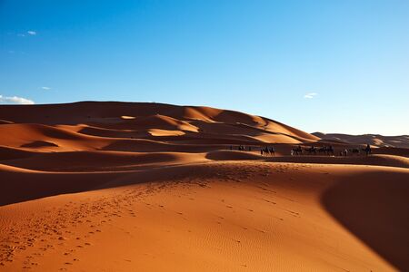 sand dunes: Sand dunes in the Sahara Desert, Merzouga, Morocco Stock Photo