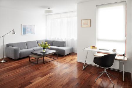 Salon Moderne, Intérieur Scandinave Banque Du0027images   84007988