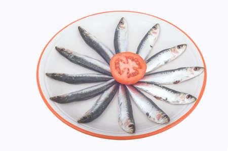 sardinas: Docena de sardinas frescas  Foto de archivo