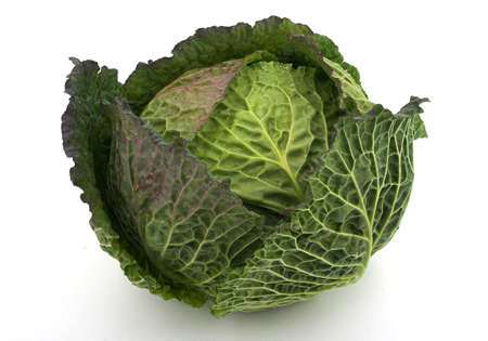 Cabbage Imagens
