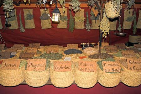 medicinal plants photo