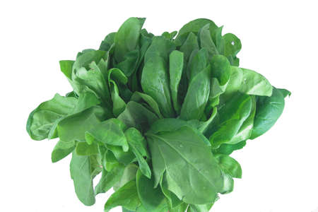 spinach bouquet Imagens