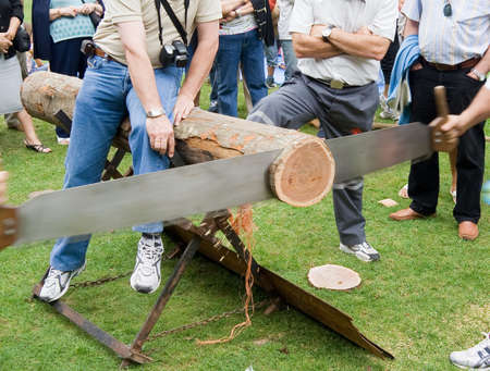 competition of trunk saw Stock Photo - 2051932