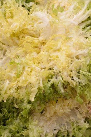 Escarola, para los fondos de imagen o ilustraci�n de alimentos Foto de archivo - 14954970