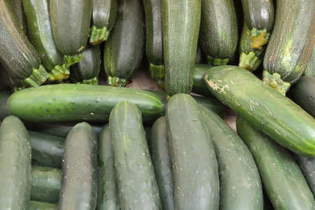 Zucchini, for image backgrounds or food illustration