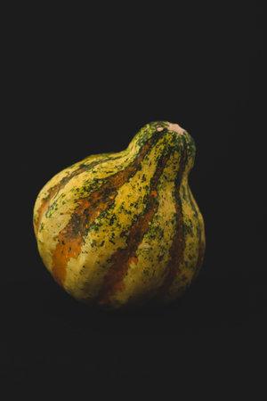 Exotic pumpkin macro close up, selective focus