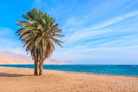 Dahab beach. Stock Photo