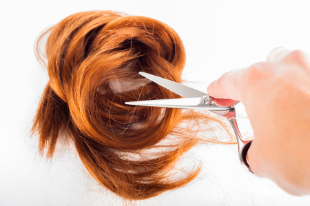 scissors and hair on a white background