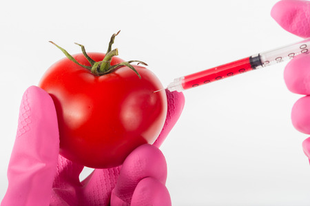 modified: modified tomato with syringe by hand