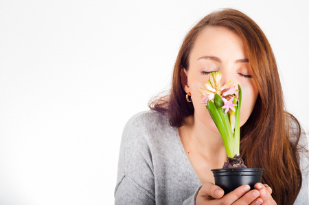 womans hands holding house plant hyacinth isolated on white background