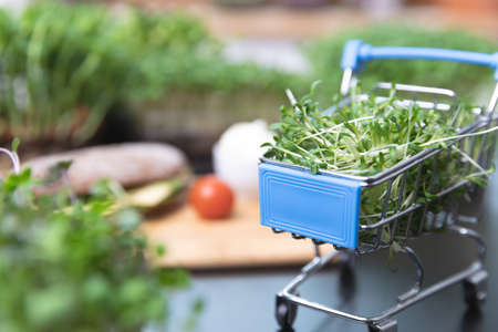 Healthy food online ordering concept. Microgreens, grain bread and shopping cart full of cutted sprout superfood.