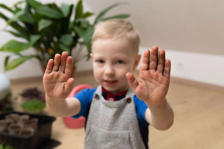 Horticulture learning botany at home - Young boy showing dirty hands after planting seeds. Hobbies at gardening. Stockfoto
