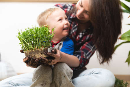 Hobbies at home gardening - Young mother and child holding peas with sprouts in container with visible roots in hands covered with dirt and smiling. Stockfoto