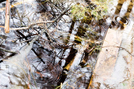 Top view of a small river with standing water. While raining and a beautiful reflection of trees. Stockfoto