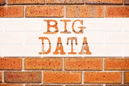 Conceptual announcement text caption inspiration showing Big Data. Business concept for Storage Network Online Server written on old brick background with space