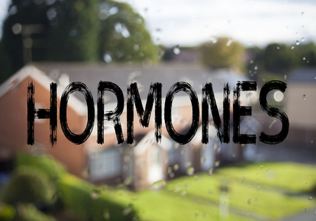 Announcement text caption showing Hormones. Business concept for Hormone Pill written on old brick background with space