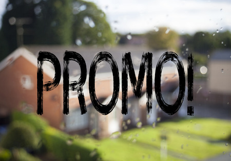 Announcement text caption showing Promo. Business concept for Promo Sale Shopping Product Promotion written on old brick background with space