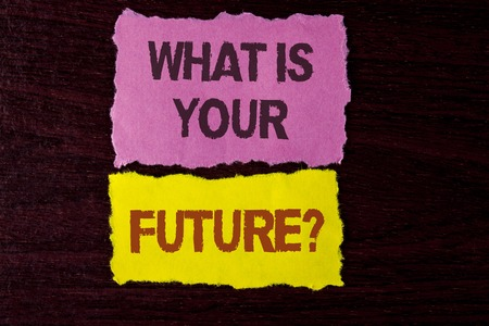 Writing note showing  What Is Your Future Question. Business photo showcasing Where do you see yourself in the next years written Tear Sticky Note Papers the wooden background. Foto de archivo