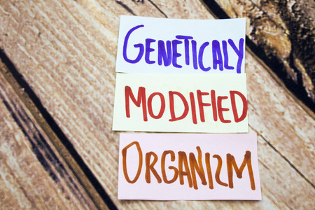 GMO or geneticaly modified organizm handwritten sign on the white paper with retro wooden background. Messages about health and gmo. Agriculture business conceptual sign.